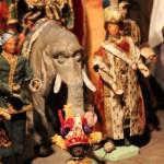 Ein Elefant mit einem besonderen Blick - Foto ivk