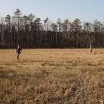 Blitzenreuter Seenplatte - Foto oberschwaben-welt