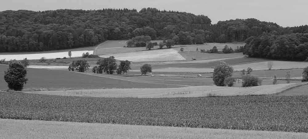 Foto Oberschwaben-Welt