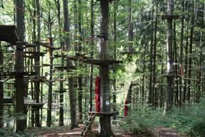 Kletterpark Tannenbühl Bad Waldsee - Oberschwaben-Welt
