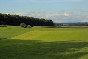 Grüne Landschaft Oberschwaben