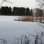 Weiherspaziergang - Langwuhrweiher