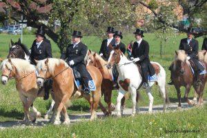 Pferd-mit-Herz-auf-der-Brus